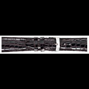Morellato klokkerem Amadeus XL G.Croc Gl K0518052032CR22 / PMK032AMADEU22 Krokodille skinn Brun mørk 22mm + standard sømmer