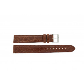 Morellato klokkerem Amadeus XL G.Croc Gl K0518052041CR18 / PMK041AMADEU18 Krokodille skinn Brun 18mm + standard sømmer