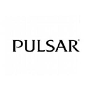 Klokkerem Pulsar 70P8JG / Y182 6d40 Stål Stål
